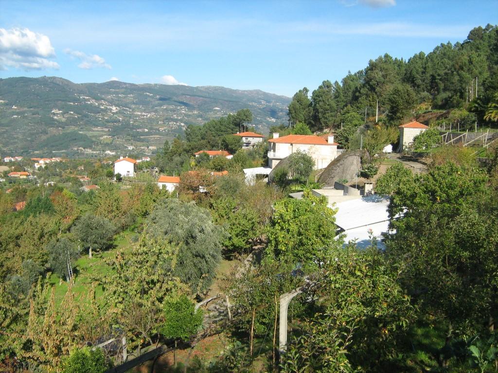 RESENDE – Quinta com 31.000m2, duas habitações e Pomar