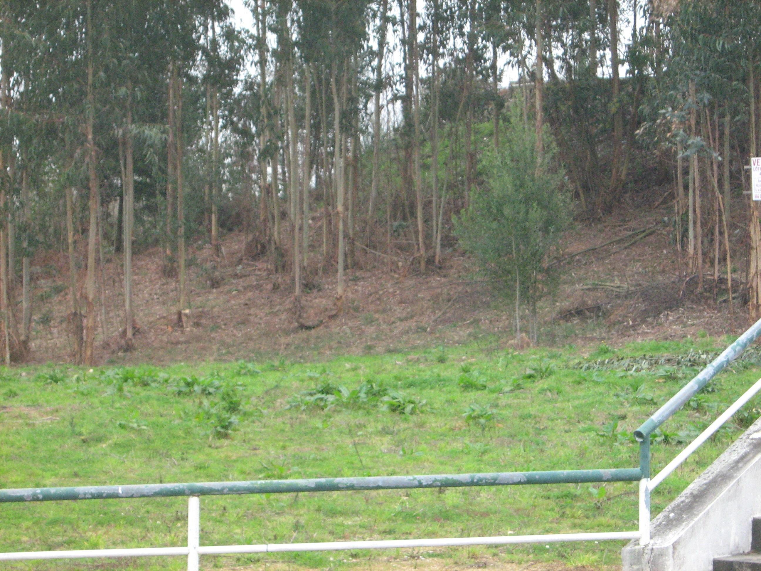 Lotes para moradias de 4 frentes, junto ao estádio Jorge Sampaio – Complexo Desportivo de Pedroso